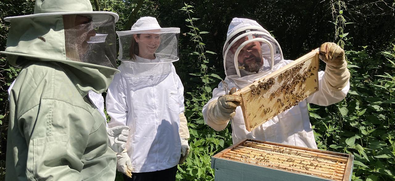 Bienen-Coaching am Haus St. Georg in Wegberg