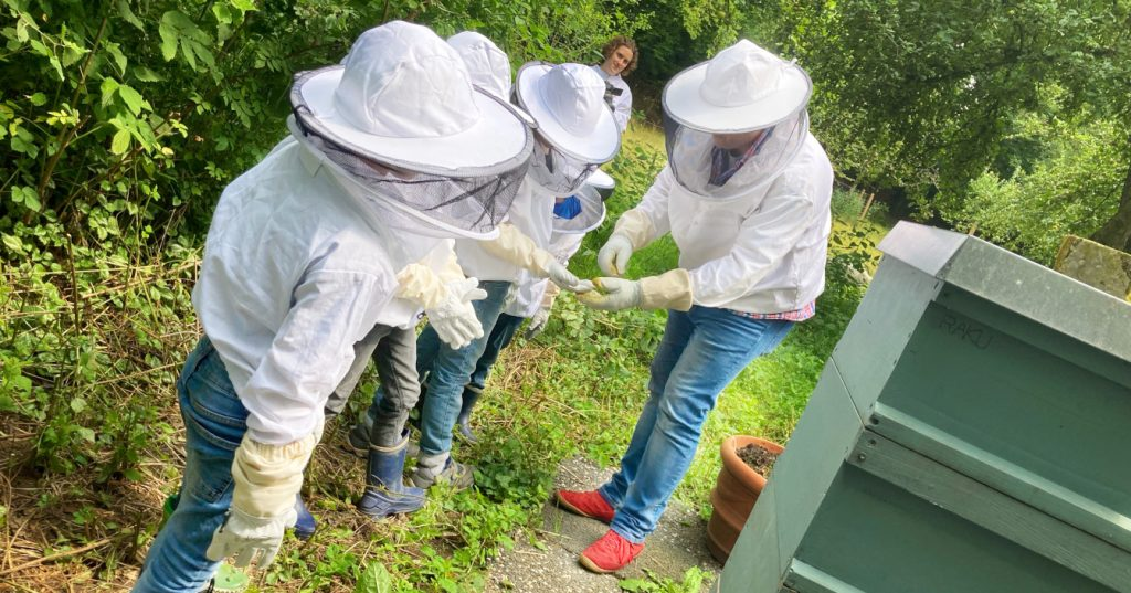 Beobachtungen am Bienenstand